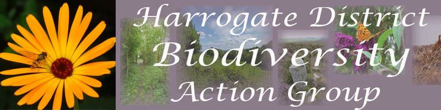 Harrogate District Biodiversity Action Group